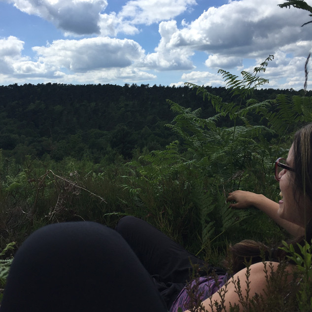 Forest Bathing 2019