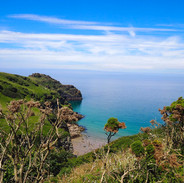 Bossiney Cove, Cornwall - photo (c). Lisa Chapman