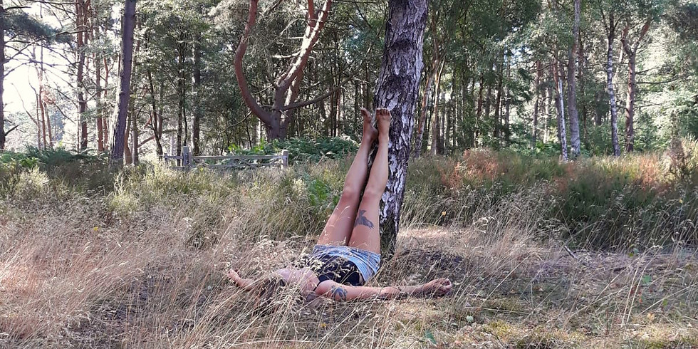 Wild Well Woman Yoga and Nidra in the Forest