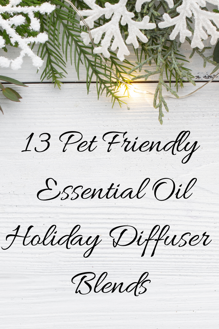 Bring the holiday spirit to your home with these 13 holiday diffuser blends, all pet-friendly!