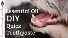 DIY Doggie Toothpaste - Quick Recipe