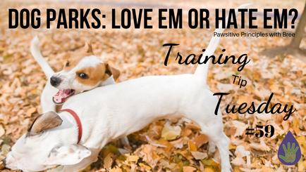 Dog Parks: Love Em or Hate Em?