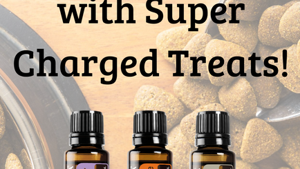 Super Charge Your Training Treats