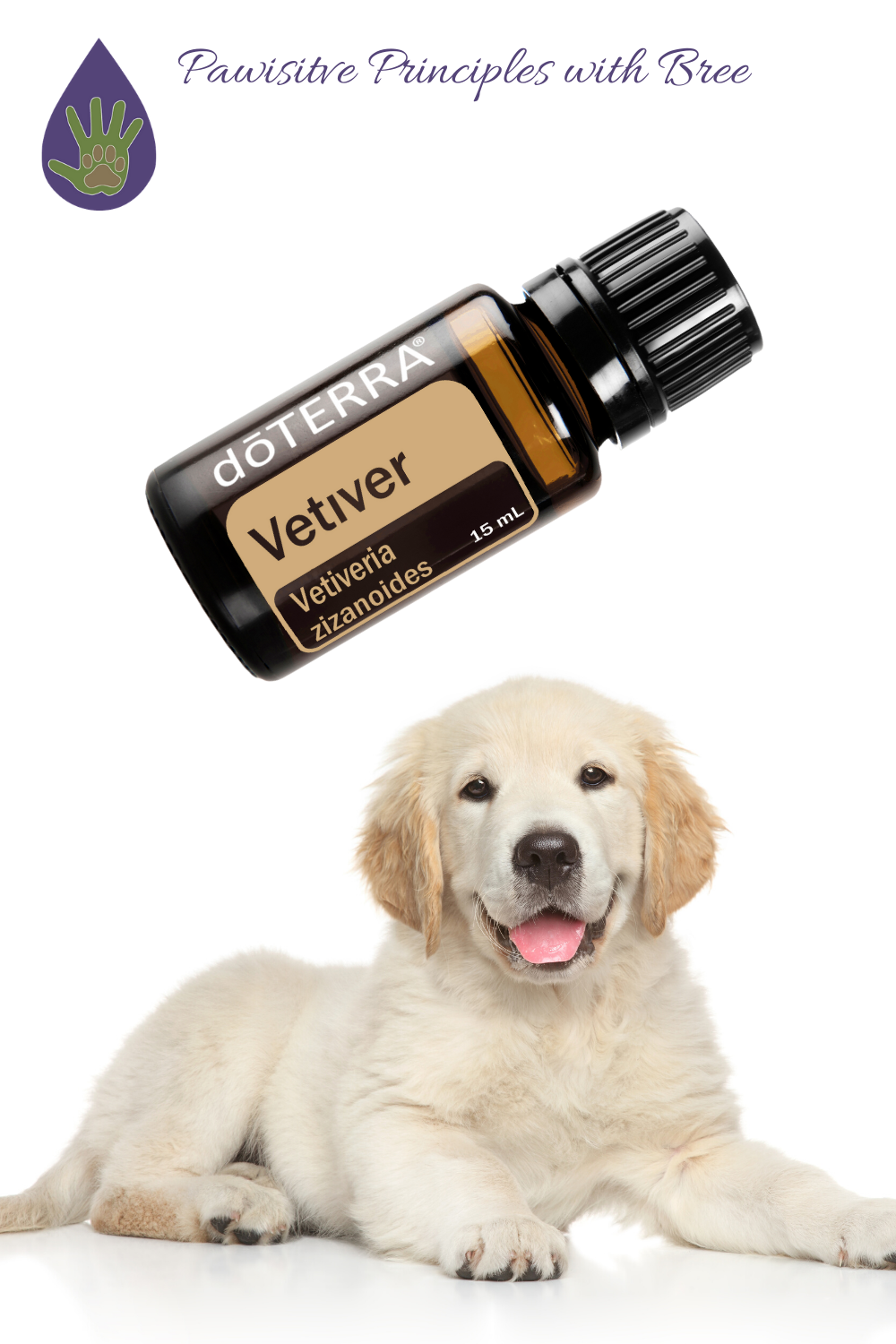 Vetiver is one of the most effective essential oils to use in training your dog