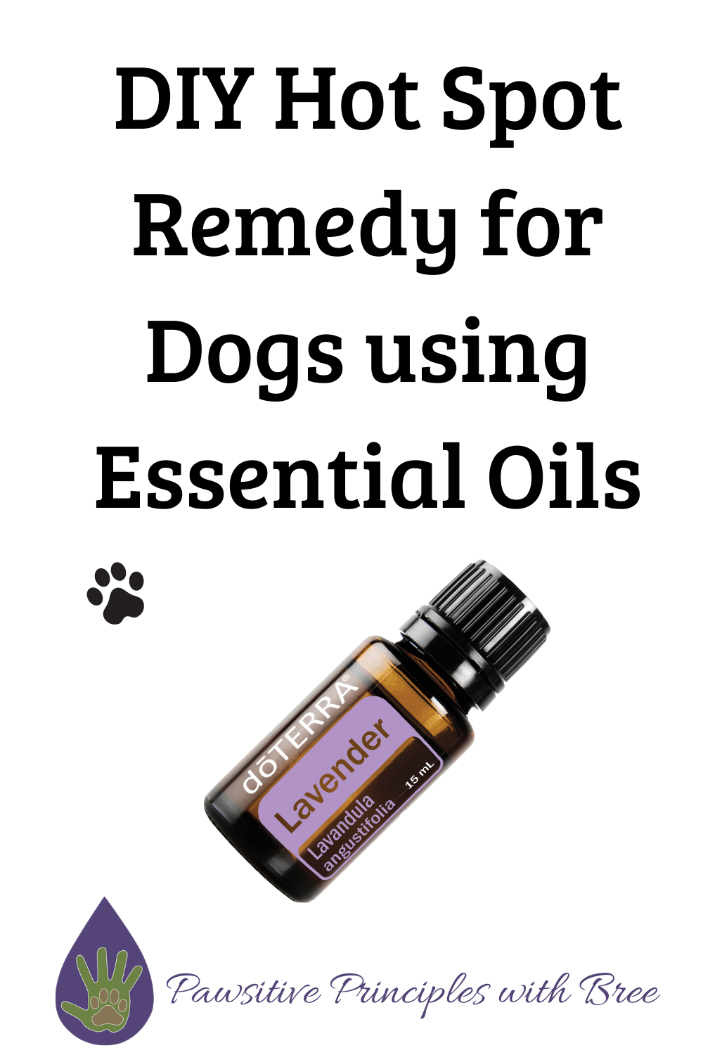 An easy DIY hot spot remedy for dogs