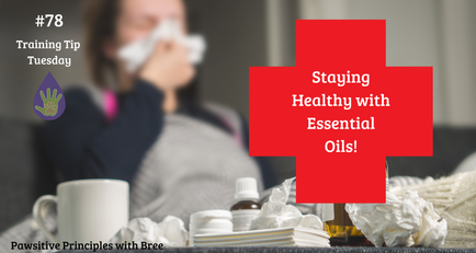 Staying Healthy With Essential Oils
