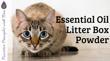DIY Litterbox Powder