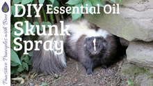 DIY Skunk Spray for Dogs
