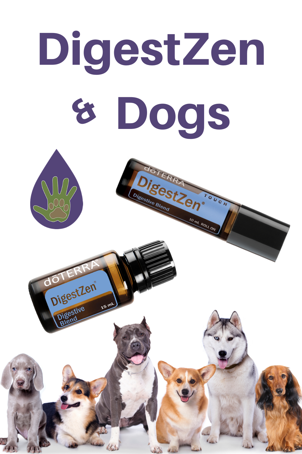 How to use DigestZen Essential Oil with dogs