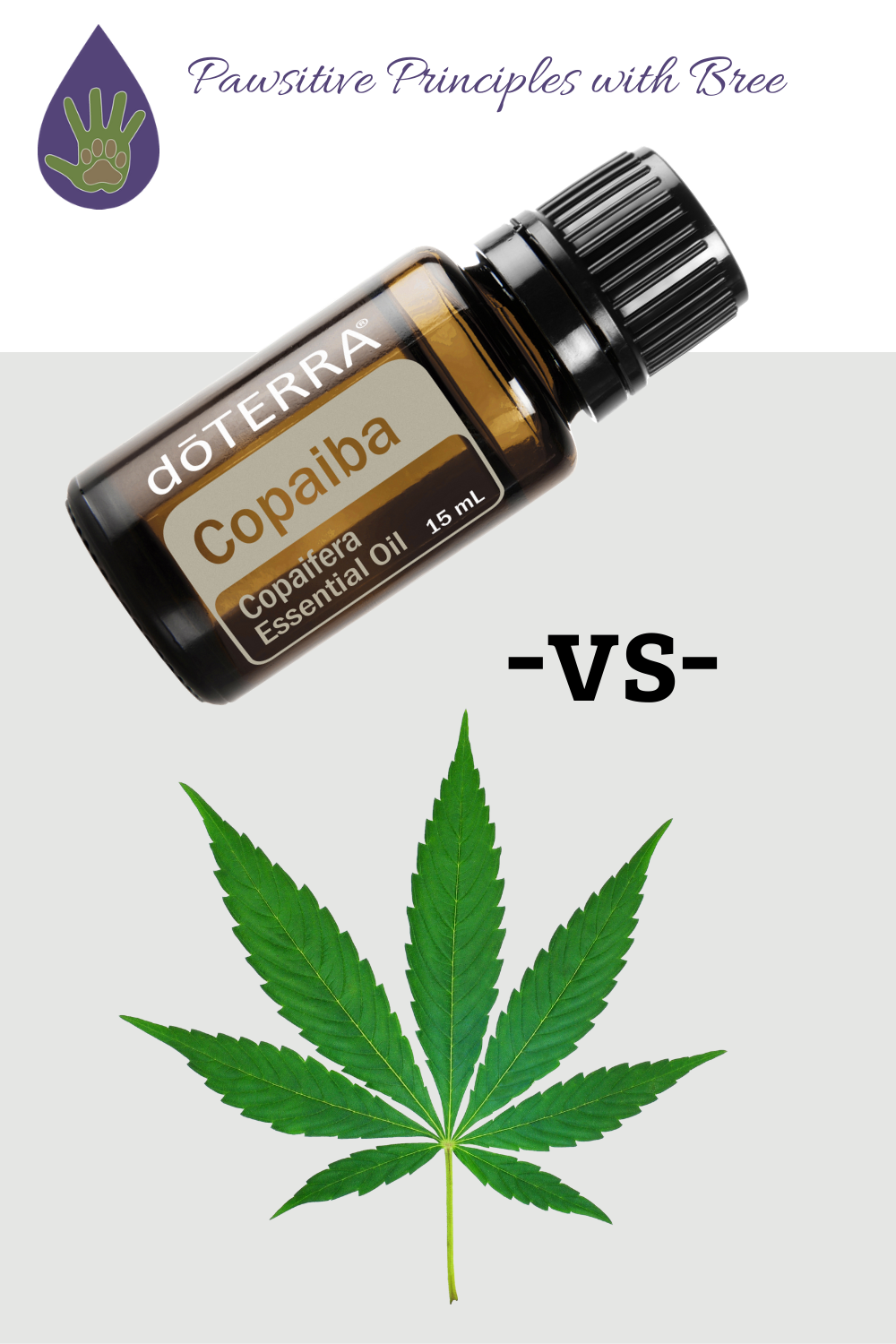 Is Copaiba or CBD the better option for your dog? Here's why Copaiba is the best choice for your pup's health.