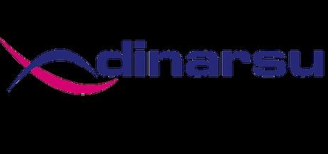 Dinarsu-Logo.png