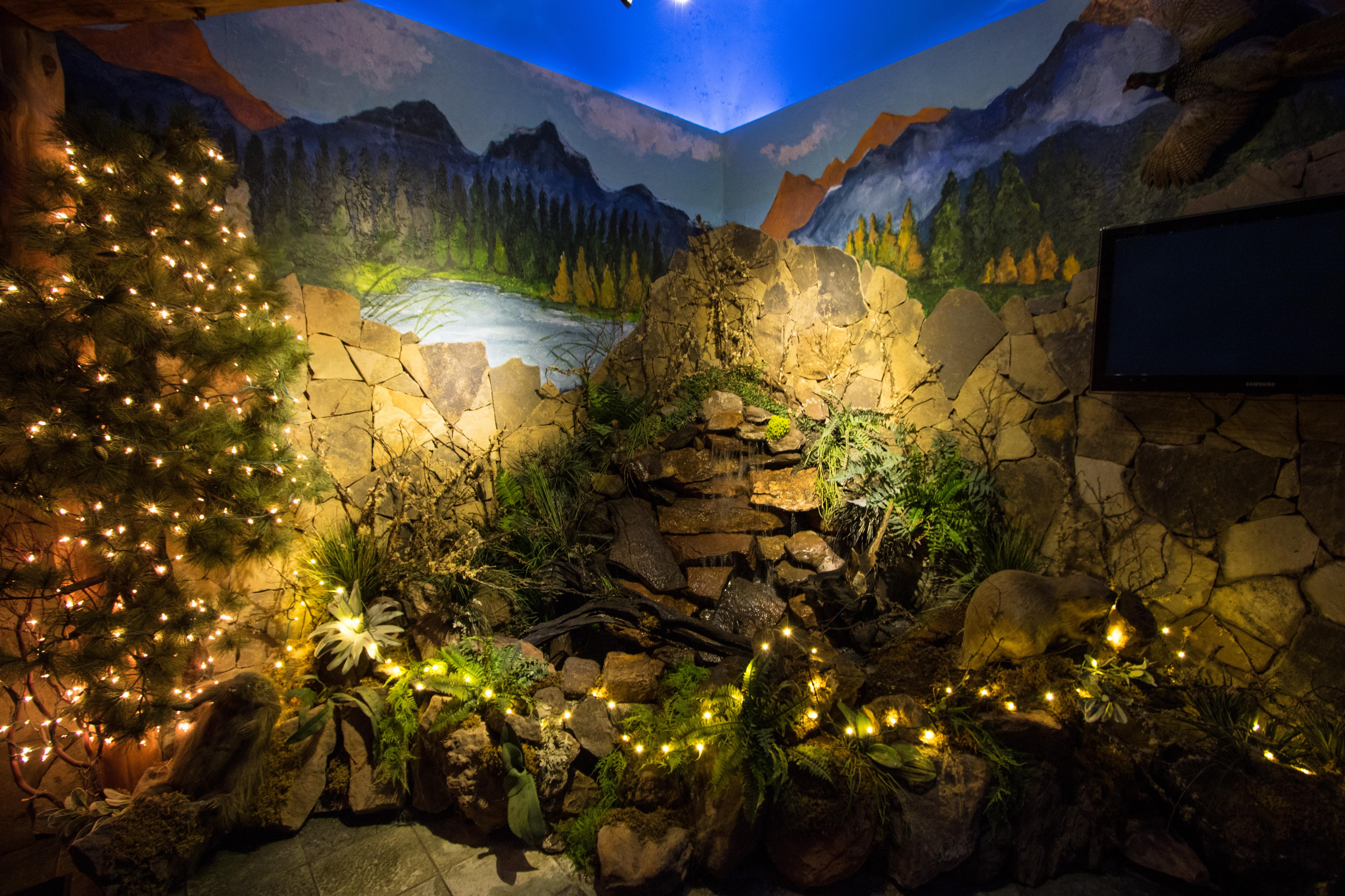 The Lodge Main Entrance Waterfall