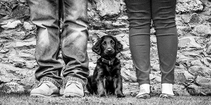 SPOTY-001-01-2-Winston-pup-.jpg