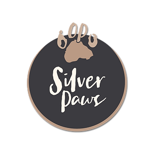 Silver-PNG.png