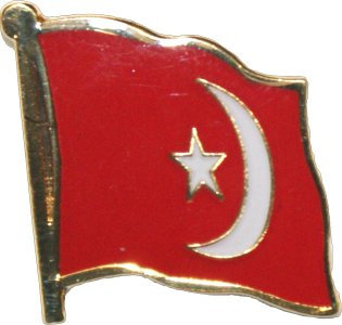 Nation of Islam Flag Pin