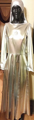 Full Length Silver Leme` Dress
