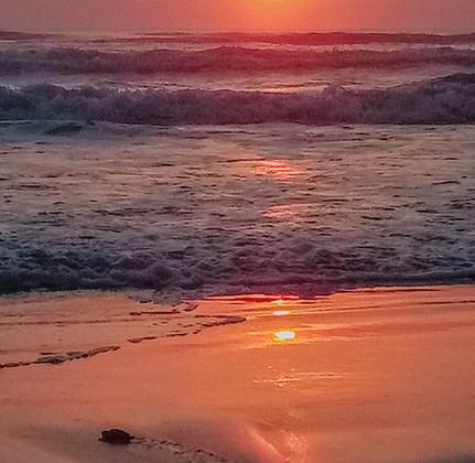 Disfruta también de un increíble amanecer.