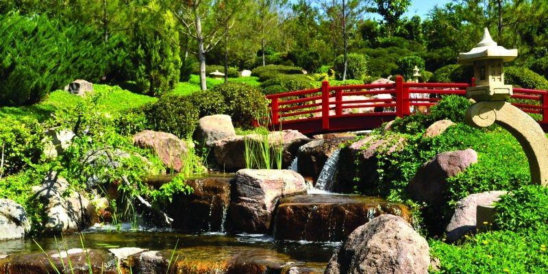 jardines-de-méxico0-800x400.jpg