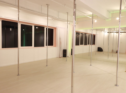 PXD Pole Pegasus Room