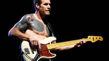 Rage Against The Machine: baixista perguntado se faria shows drive-in ou com capacidade reduzida