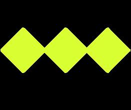 Branding ACEE Nov 2020 (8).png