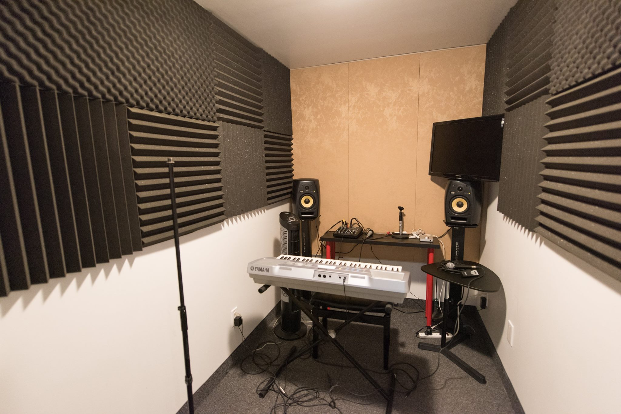 Tone Labs Music Vocal Room