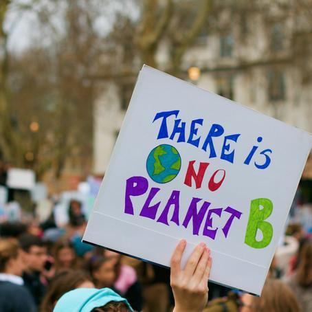 E se viver num planeta saudável se tornasse um direito humano?