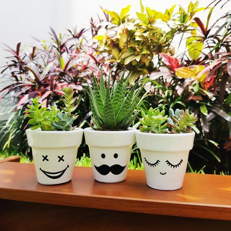 Plantas 2.jpeg