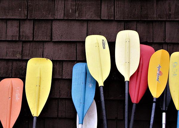 Kajak Paddle