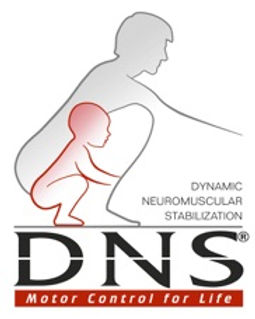 DNS_ANRGB.jpg