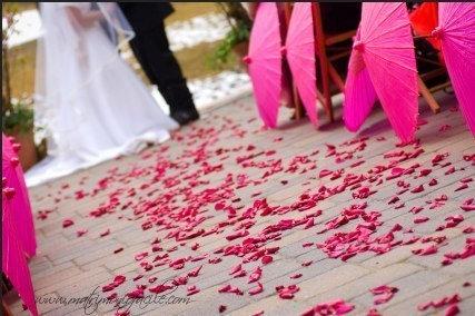 Petali di rosa fucsia