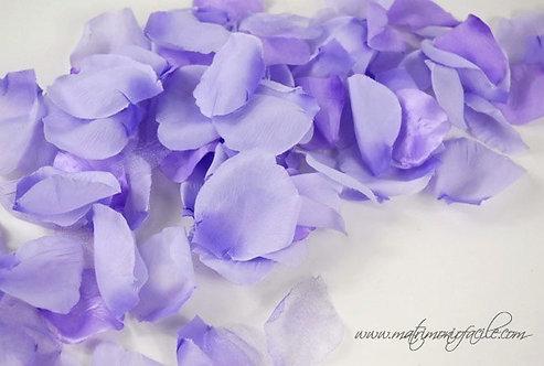 Petali di rosa lilla