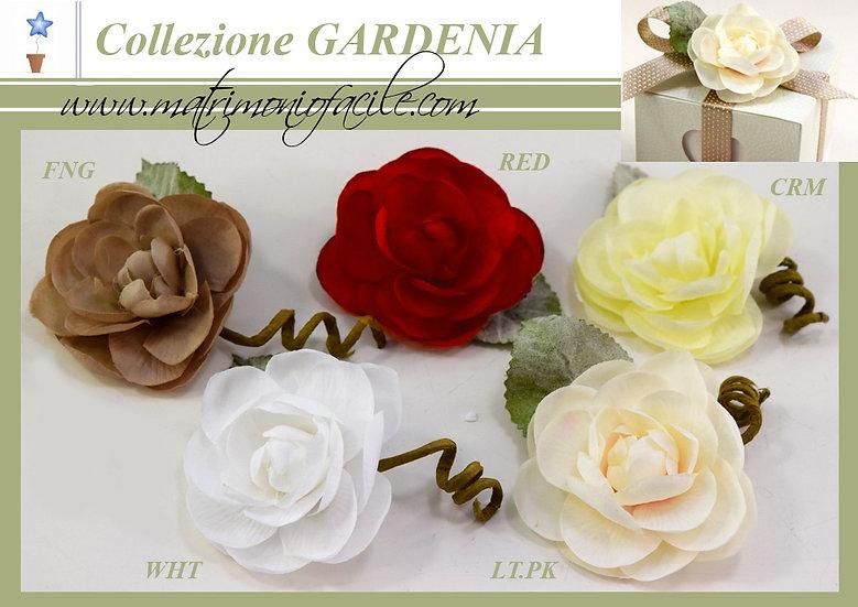 Gardenia - Fiori per confezionamento