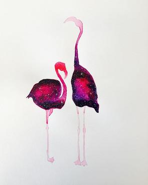Flamingos take two! I've loved having th