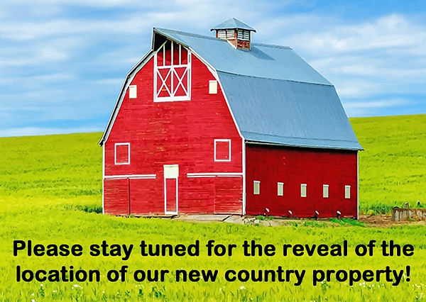 red-barn-in-field-adult-paint-by-numbers