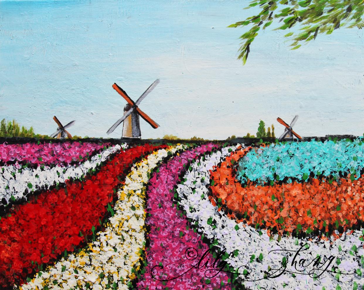 Tulip Field2