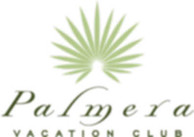 PALMERA_LOGO_web.png