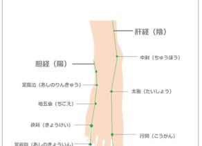陰ヨガ 春の経絡 胆・肝 そのⅡ
