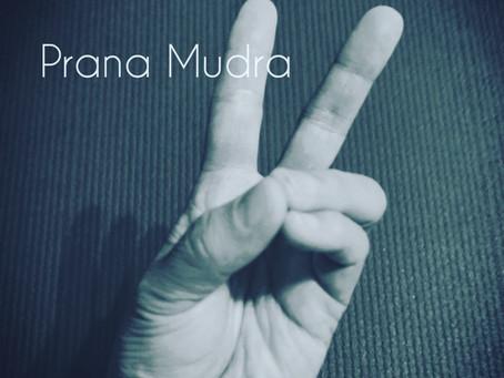 プラーナ・ムードラ