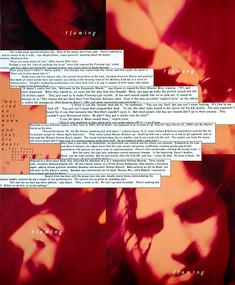 The Flaming Lips - Ray Gun Magazine