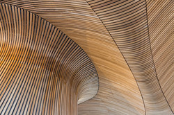 Architectural details of Welsh Assembly