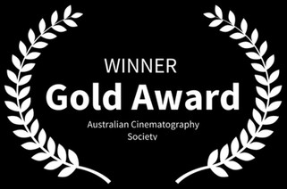 Winner-goldACS.JPG