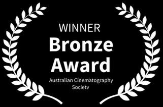 Winner-BronzeACS.JPG