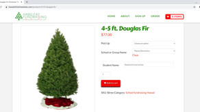 APT Partners with Habilitat for Christmas Tree and Wreath Sales