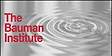 Bauman Institute Logo.png