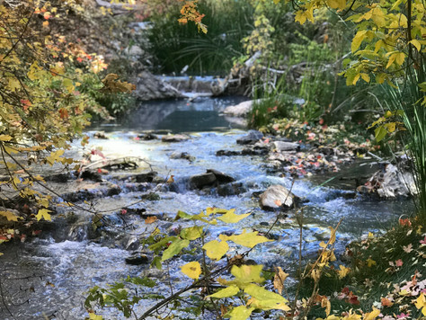7 Summer Or Fall Days in the Vail Valley