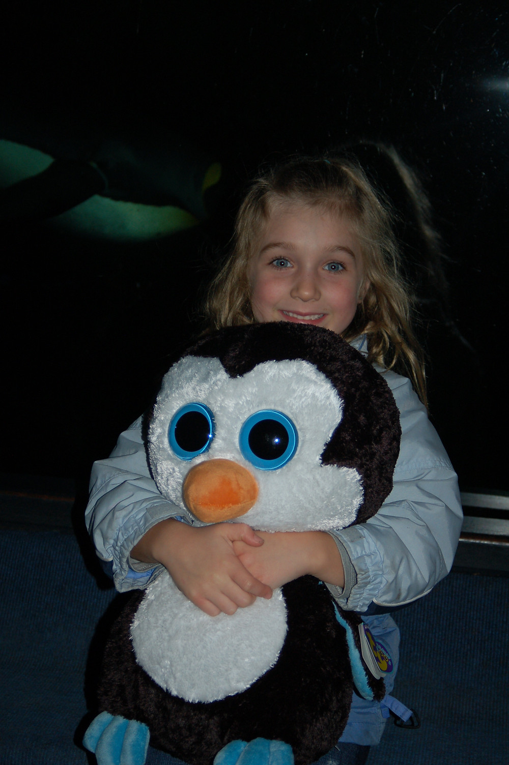 The worst souvenir we ever bought--Mr. Penguin sat on her lap for 20 hours on the road trip back from NYC to MN with 7 people in the mini van.