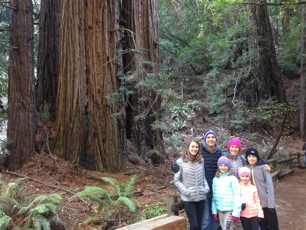 We had 2 in middle school when they decided the Muir woods was a bust.  Moments after this photo they went and waited in the care.