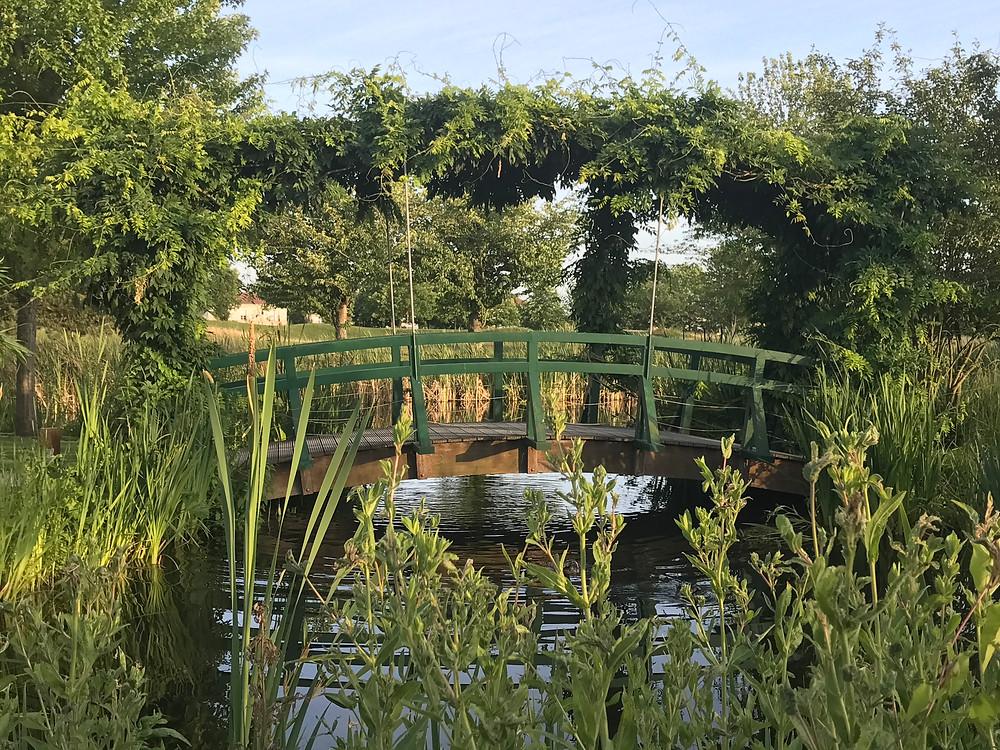 It looked just like Monet's garden
