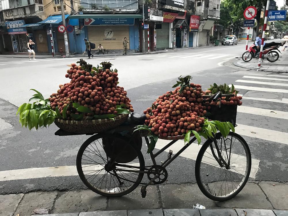 Hanoi Vietnam fruit stand on bicycle